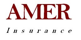 Amer Insurance
